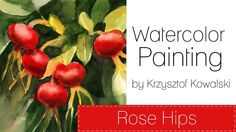 Watercolor painting - Rose Hips