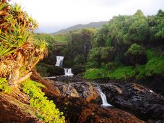 Maui's Seven Sacred Pools   Hawaii Pictures of the Day
