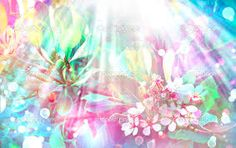 Resultado de imagem para fotos da flor sakura