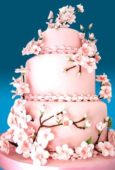 cherry blossom pink cake, imagine have this cake in my wedding :D