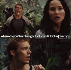 Where do you think they got that sound? Jabberjays copy. | Catching Fire