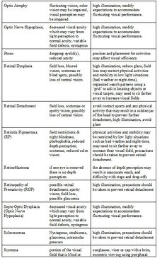Module 4. Eye Report Checklist with Specific Eye Conditions with Corresponding Adaptations pg 4.