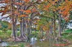 9) Another gorgeous photo taken by Jerry Cotten, this time of the Guadalupe River near Waring. Look at those beautiful fall colors!