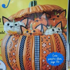 Kitty pumkins