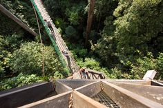 View from the treetop canopy walkway at Borneo Rainforest Lodge