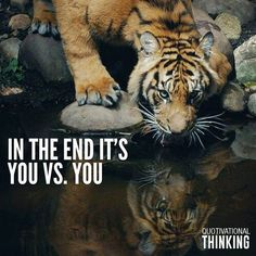 Tiger quotes - In the end it's you vs you 💯🐯 💥 💎 Tiger Quotes, Lion Quotes, Animal Quotes, Short Inspirational Quotes, Inspiring Quotes About Life, Great Quotes, Motivational Quotes, Reality Quotes, Success Quotes
