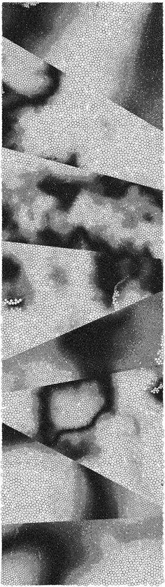 Noise[Noise[Noise[ ... ]]] by Paolo Čerić, via Behance