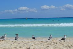 #Love #Beach #Sand #Travel
