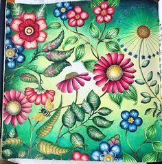 WEBSTA @ edytaa_1985 - #kolorowanki #kolorowankidladorosłych #kolorowamafia #coloredpencil #coloring #coloringforadults #coloringbookforadults #coloringbook #adultcoloring #adultcoloringbook #prismacolor #colouringbook #colouring #polychromos #prismacolorpremier #luminance #johannabasford #tajemnyogród #secretgardencoloringbook #coloring_masterpieces #johannabasfordsecretgarden #livrocoloriramo #desenhoscolorir #beautifulcolor #nossaflorestaencantada #kochamkolorować #artecomoterapia…