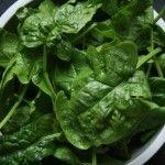 Penne spinaci e ricotta