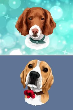 Group Of Dogs, Hiking Dogs, Draft Horses, Cartoon Dog, Caricature, Most Beautiful Pictures, Cute Babies, Your Dog, Dog Cat