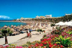 Utflukter fra Playa de las Americas - startour.no