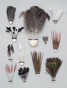 Badminton Shuttlecocks made with Bird Eggs and feathers / by Sarah Illenberger Badminton Pictures, Badminton Tips, Badminton Sport, Sarah Illenberger, Types Of Feathers, Vintage Picnic, Conceptual Photography, Product Photography, Feathers