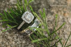 Lake Norman Wedding | The Lodge at Greenbay | Alisha Rudd Photography #lakenorman #lakenormanwedding #ncweddingphotographer #scweddingphotographer #ncwedding #scwedding #charlottephotographer #charlotteweddingphotographer
