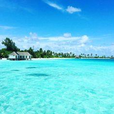 The Maldive Islands  https://www.hotelbookingoffer.com/maldives-hotel.html  #maldives #beachhotels