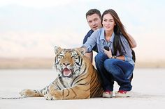 Wild at Heart Photo - Megan Fox and Brian Austin Green: Hollywood's Hottest Married Couple - Us Weekly