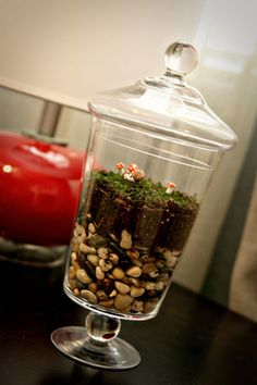 so cute! a forest in a jar! Mabey 3 or 4 or 5 of these, all a little different? One for me to keep and the others as prizes???