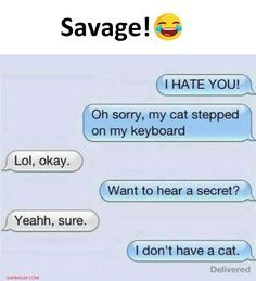 Hilarious Text About Cat vs. Hate - Funny Text - - Hilarious Text About Cat vs. Hate The post Hilarious Text About Cat vs. Hate appeared first on Gag Dad. Funny Texts Jokes, Text Jokes, Funny Text Fails, Cute Texts, Crazy Funny Memes, Funny Text Messages, Really Funny Memes, Funny Relatable Memes, Haha Funny