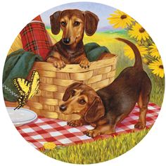 Bits and Pieces - 500 Piece Round Jigsaw Puzzle for Adults - Picnic Supper - 500 pc Dachshund Dogs at a Picnic Round Jigsaw by Artist Christopher Nick Picnic Blanket, Outdoor Blanket, Christmas Puzzle, Puzzle Shop, Dog Puzzles, Puppy Play, Dachshund Dog, Puppy Pictures, 500 Piece Jigsaw Puzzles