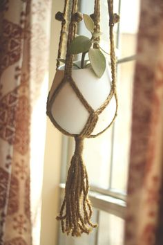 Cute little hanging plant for a window