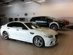 Custom BMW, Land Rover, and Mercedes