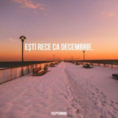 sunt rece ca interiorul unui congelator :)) ~ Emmi Hell&Back ~ R Words, Motto, Beach, Water, Quotes, Outdoor, Night, Pretty Quotes, Gripe Water