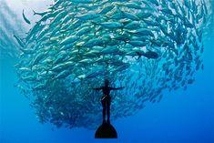 Лучшие фотографии со всего света - Удивительные фотографии со всего света