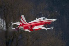 F-5E Patrouille Suisse Swiss Air Force Meiringen by Flight Video on 500px
