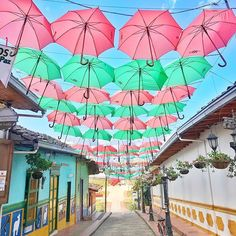 We found an umbrella street in Guatape!☂️ the last time we found one of these was in Brno in the Czech Republic! Where else have you seen umbrella streets? I always think they look so pretty! 💫 ••••••••••••••••••••••••••••••••••••••••  #guatapé #guatape #colombia #brno #umbrellastreet #umbrella #discoversouthamerica #traveldeeper #travelcolombia ••••••••••••••••••