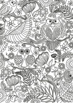 We do all kinds of textbooks illustrations, story - books, story boards and doodle books Owl Coloring Pages, Pattern Coloring Pages, Adult Coloring Book Pages, Doodle Coloring, Free Coloring, Coloring Books, Mandala Coloring, Doodle Books, Doodle Art