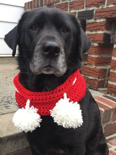 """Red Dog Scarf- The """"Pom Pom Love"""" — Red and White Dog Cowl — Red Infinity Dog Scarf — Red Dog Scarf Pom Pom by BKLYNHandmade on Etsy"""
