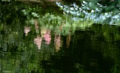veredit-iertes - photographic - poems : lago di como - arte - riflessione - anelito