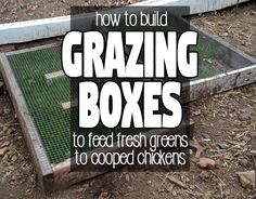 Chicken Coop Upgrade: Astroturf Lined Nesting Boxes - Hawk Hill - Coops - Portable Chicken Coop, Best Chicken Coop, Chicken Coop Plans, Building A Chicken Coop, Fresh Chicken, Chicken Runs, Chicken Coops, Chicken Houses, City Chicken