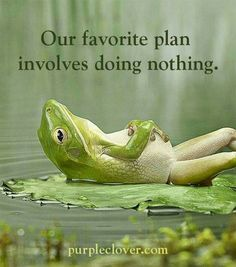 Our favorite plan involves doing nothing.