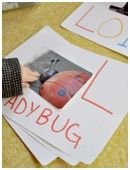 Lots of fun phonics activities.     Here: Use a digital camera and some simple drawing supplies to help your kindergartner make a personalized letter-sound book.