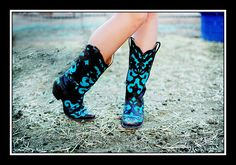 Want!! Black and teal!! So cute
