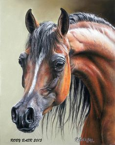 Pastel Arabian Mare Horse Painting - Horse Art Horse Swing, Mare Horse, Beautiful Arabian Horses, Arabian Art, Horse Artwork, Horse Face, Bristol Board, Horse Drawings, Equine Art