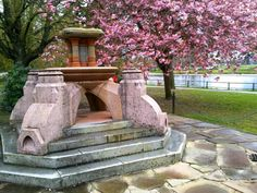 Fountain by cherry blossom tree in Inverness by Karen V Bryan, via Flickr #scotminitour