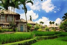 Kamandalu Resorts and Spa, 인도네시아, 우붓