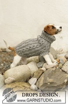 """Knitted DROPS dog coat in """"Karisma"""" with cable pattern."""