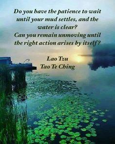 Lao Tzu Quotes, Zen Quotes, Spiritual Quotes, Wisdom Quotes, Life Quotes, Inspirational Quotes, Taoism Quotes, Spiritual Life, Motivational