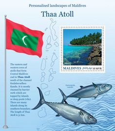 MLD16219b Deep Pool, Maldives, The Row, Whale, Westerns, Stamps, Island, Landscape, Animals