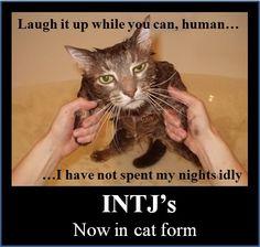 INTJ---hahahahahahahahaha!