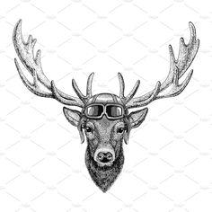 Deer wearing leather helmet Aviator, biker, motorcycle Hand drawn illustration for tattoo, emblem, badge, logo, patch by Art Loft on @creativemarket