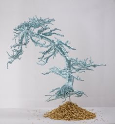 Untitked (Bonsi Tree), by Lin Tianmiao