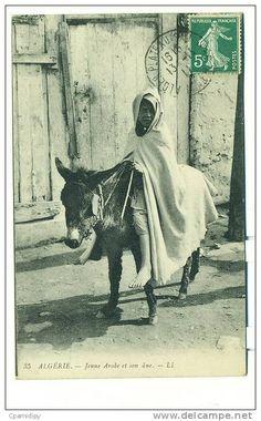 SCENES  ET TYPES, Jeune Arabe Et Son âne ALGERIE - Algérie