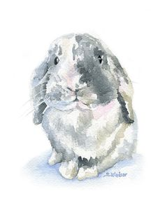 Gray Lop Rabbit Watercolor Painting 11 x 14 by SusanWindsor