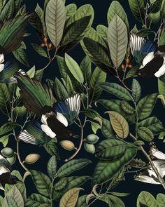 removable vintage wallpaper blue bird and leaves pattern dark background unique graphics botanical room decor wall mural Vinyl Wallpaper, Self Adhesive Wallpaper, Graphic Wallpaper, Wallpaper Decor, Botanical Wallpaper, Bird Patterns, High Quality Wallpapers, Dark Backgrounds, Chinoiserie