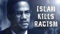 Islam Kills Racism