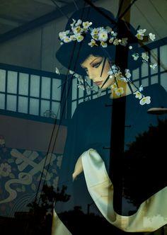 Urban Geisha 2 - Photography by Andrew Kavanagh